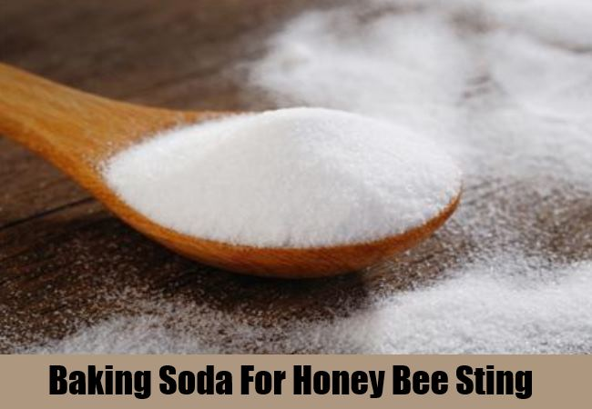 Get Rid of Honey Bee Stings With Simple Remedies | Find Home