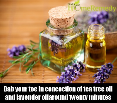 tea tree oil and lavender oil