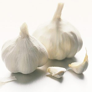 Garlic for throat infection