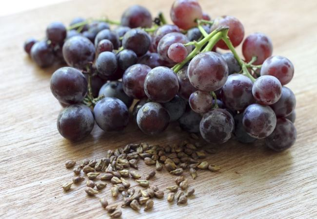Extracts Of Grape Seeds