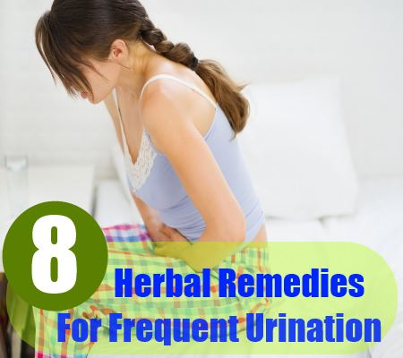 8 herbal remedies for urination
