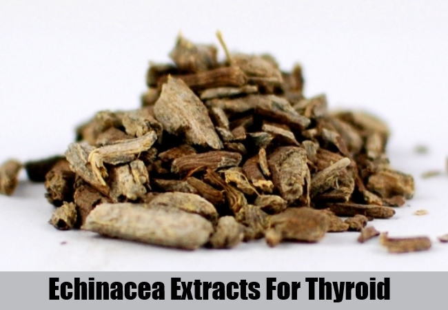 Echinacea Herb Extracts