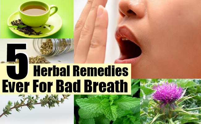 Remedies Ever For Bad Breath