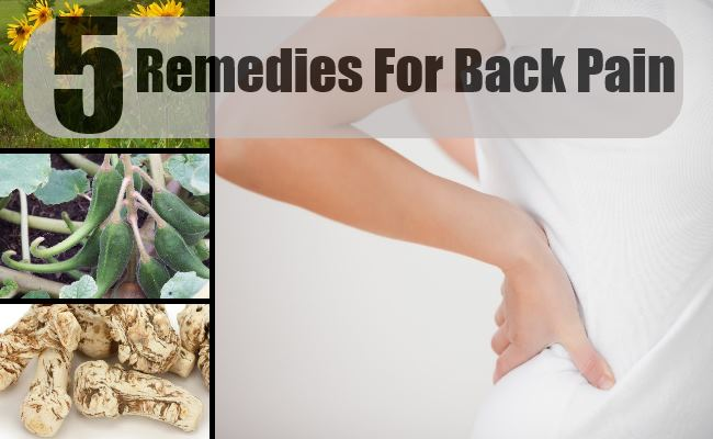 Herbal Remedies For Back Pain Treatments Amp Cure For Back