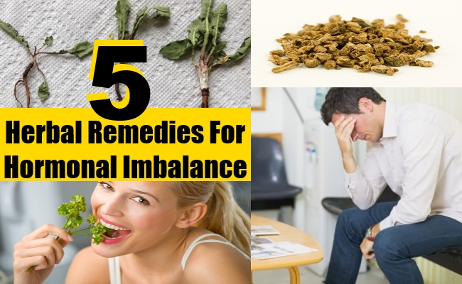 Herbal Remedies For Hormonal Imbalance - Treatments & Cure For