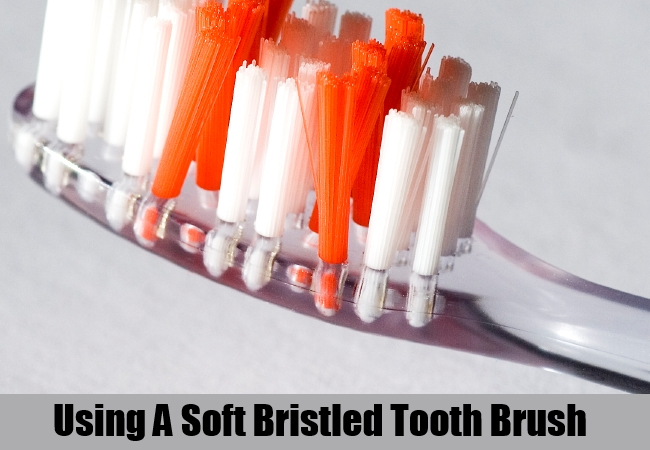 Soft Bristled Tooth Brush