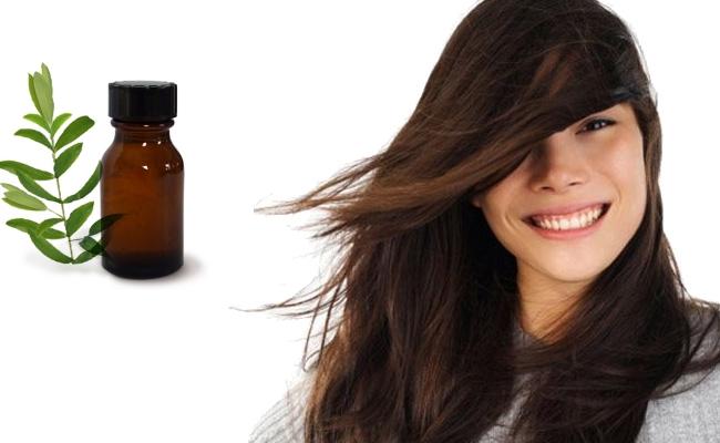 Lice Free Hair