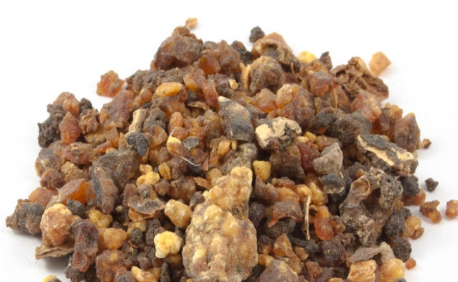 Guggul Herb Extract