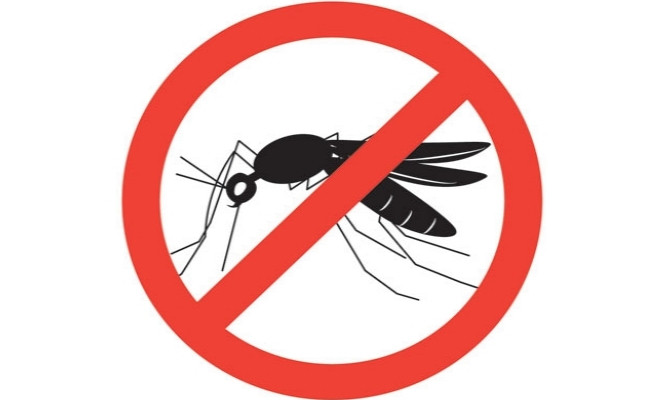 Mosquito Repellent And Cure