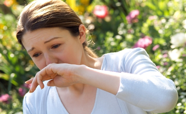 Remedy For Pollen Allergy