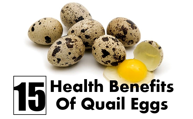 using quail egg to increase platelet Key words: quail egg, cholesterol, anemic hypertension, haemoglobin, platelets, blood sugar i introduction the scourge of high blood pressure quail egg boost haemoglobin concentration in anaemic subjects, lower high blood pressures, improve diseased.