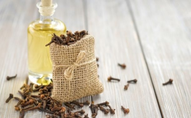 Treating Thrush With The Help Of Clove Oil