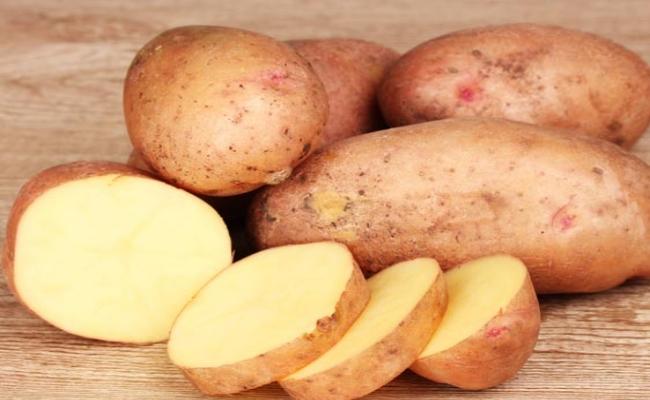 Potato (3)