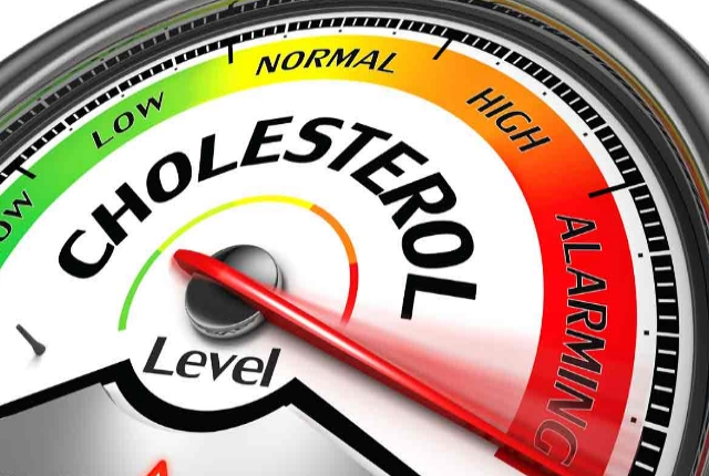 Spikes Up Cholesterol Levels