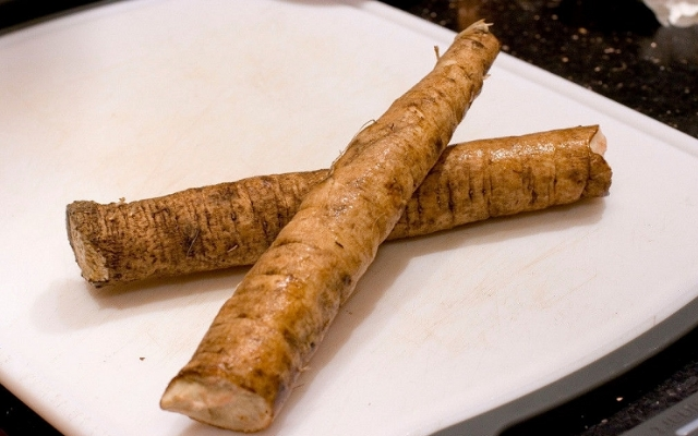 Use Fresh Burdock Root