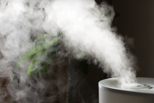 Use Of Humidifier