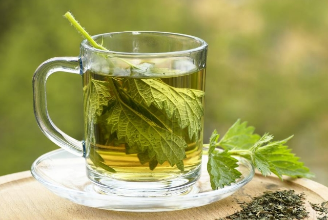 Drink Nettle Tea