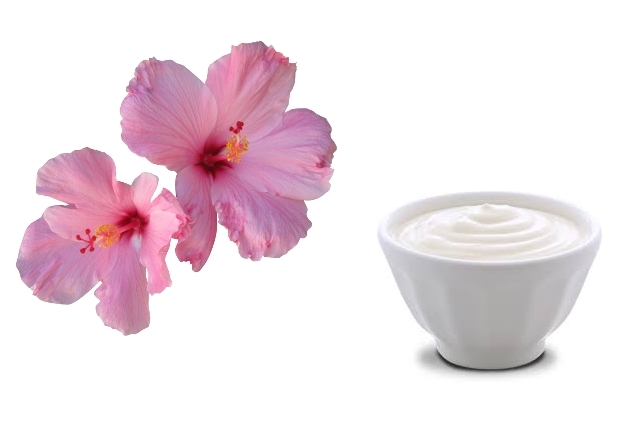 Hibiscus And Yogurt Mask