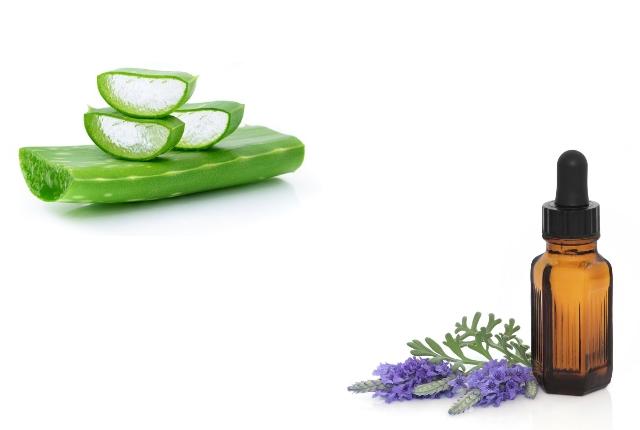 Lavender Oil With Aloe Vera Gel