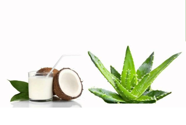 Coconut Milk, Aloe Vera Gel Shampoo