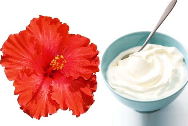 Hibiscus And Yogurt Hair Mask
