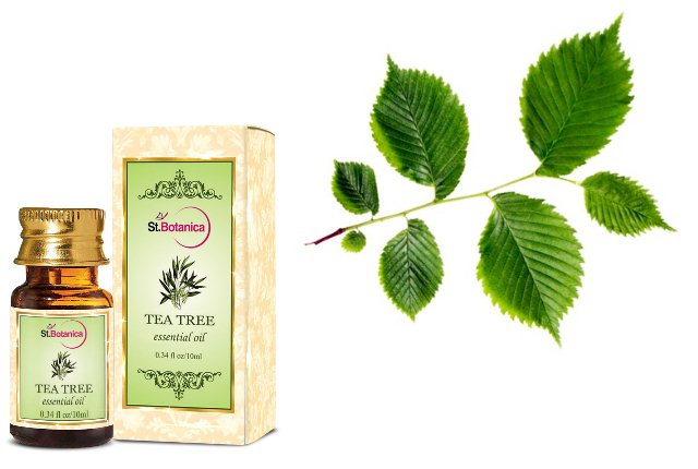 Tea Tree Oil And Slippery Elm