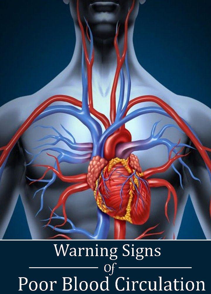 6 Warning Signs Of Poor Blood Circulation