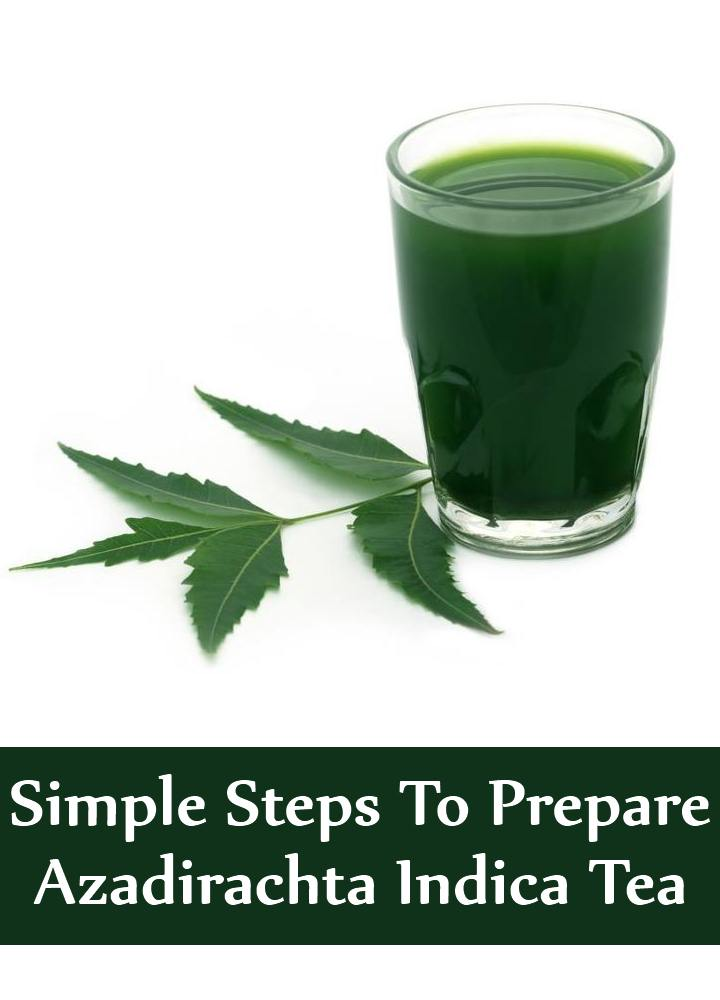 7 Simple Steps To Prepare Azadirachta Indica Tea