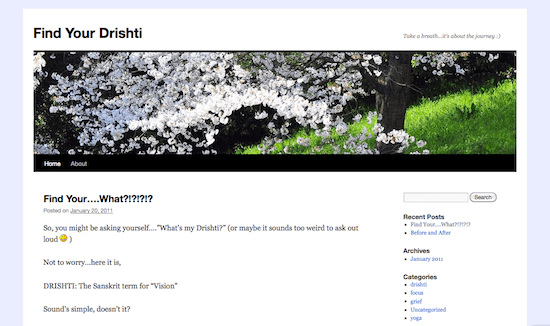 findyourdrishti-wordpress