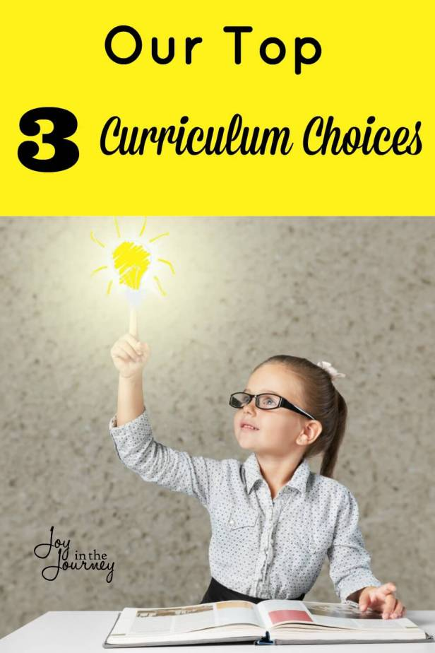 Through the years, I have used a variety of different curriculums. I have found three of these to be our favorite curriculum choices.