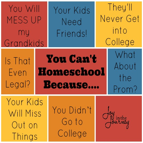 You Can't Homeschool