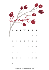December calendar from FindingNorth