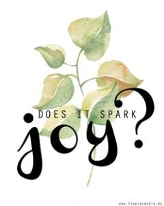 KonMari - spark joy thumb