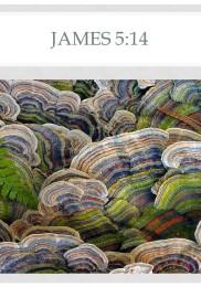 James 5-14