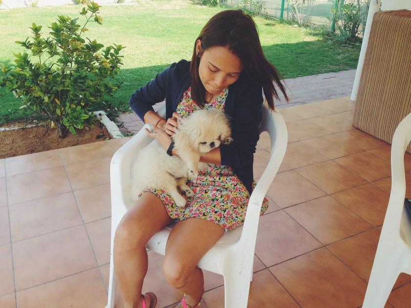 getaway-with-pets-in-dubai
