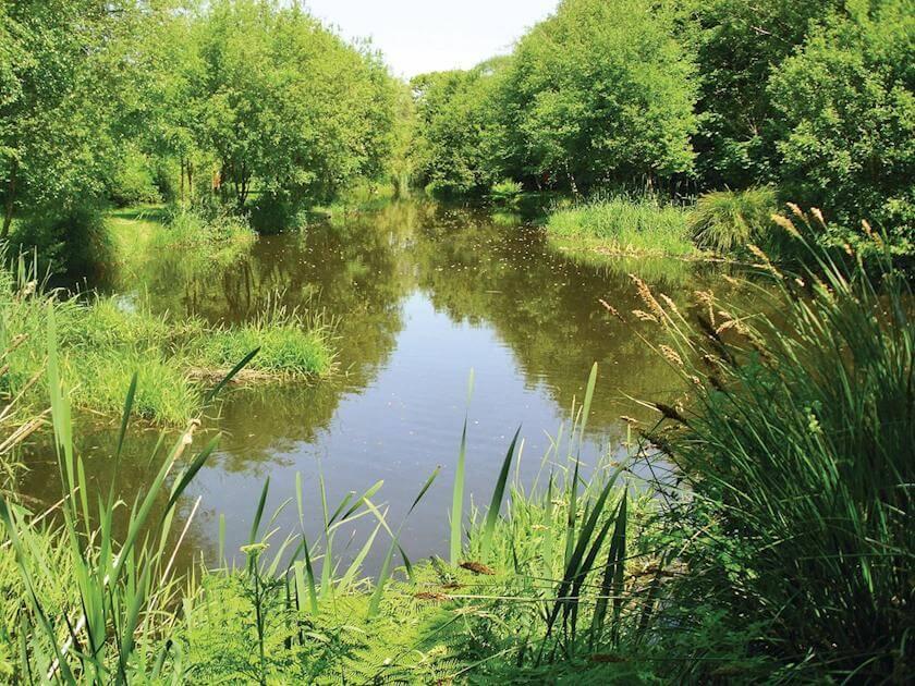 Meadow Lakes Lake