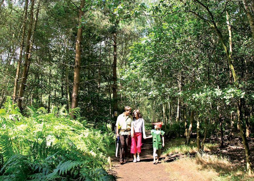 Sherwood Castle Walk