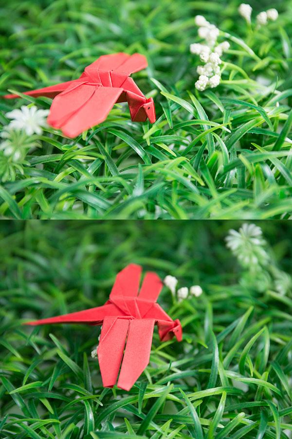 origami dragonfly easy
