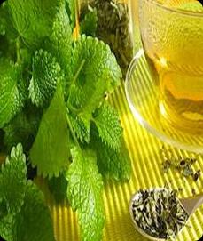 Herbs as Remedies
