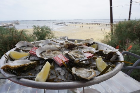 Oysters from