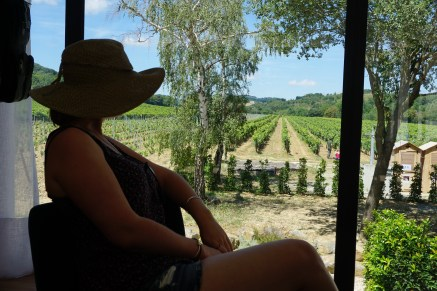 The view from the new tasting room at La Soujeole