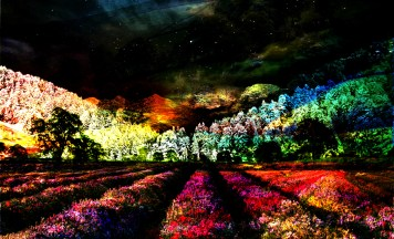 Fine Digital Art Nightscape