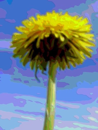 Flower Layer Art Dandelion
