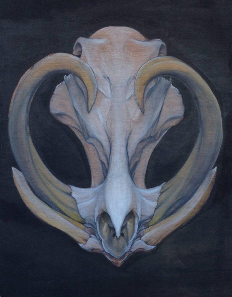 Noble by Tariq Sabur 2013 Warthog skull painting tempe arizona fine art artist painter mural muralist realism tattoo ink paint decor interior design apeshit