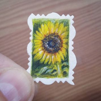Kansas Sunflower State Flower