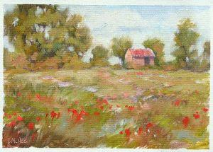 spring-poppies1