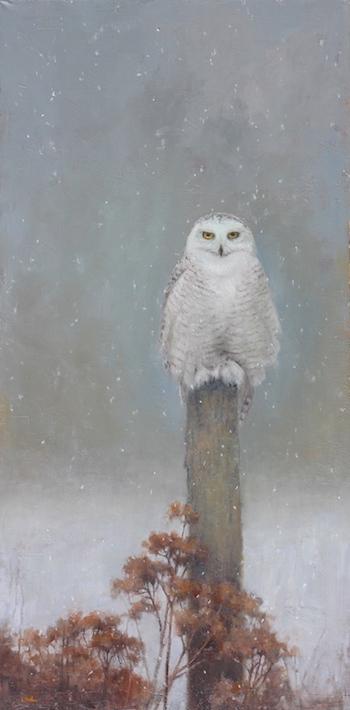 snowy owl oil painting by Lori McNee