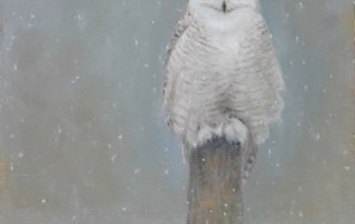 snowy owl oil painting by Lori McNee