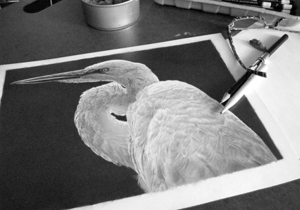 Helpful Negative Drawing Tips Revealed by Pencil Artist