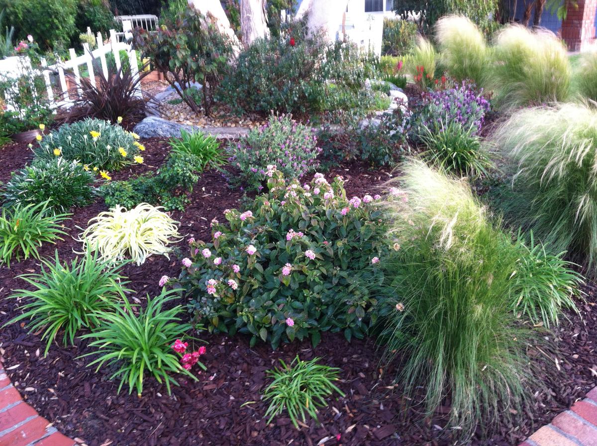 Karen's No-lawn Front Yard in Irvine - FineGardening on No Lawn Garden Ideas  id=96590